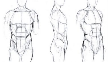 HOW TO DRAW BODY SHAPES Tutorials For Beginners 8