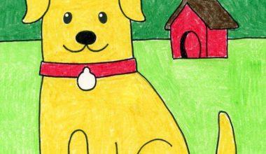 Draw a Dog 791x1024 1 1